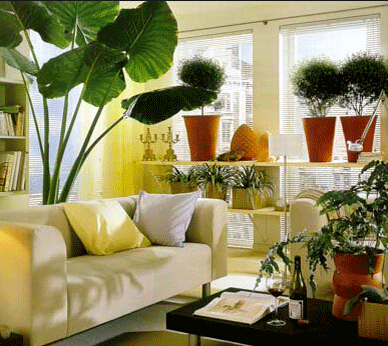 Artificial Plant For Living Room
